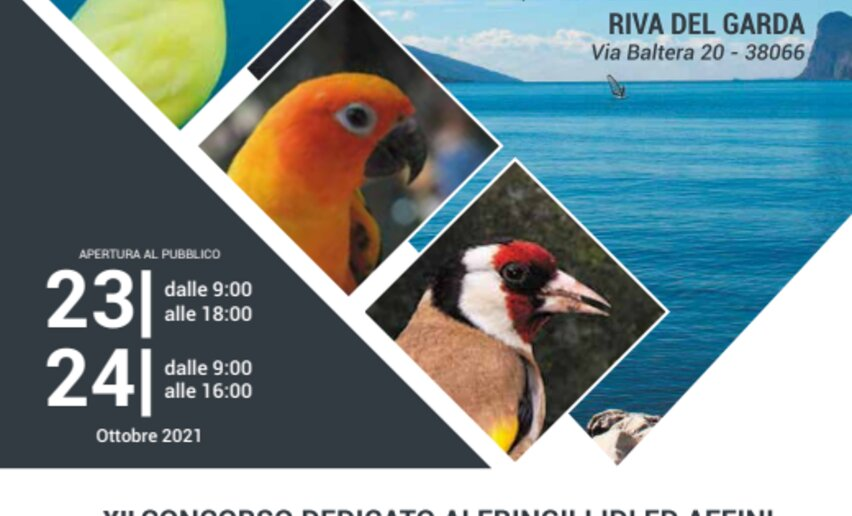 Esposizione Ornitologica Trentina